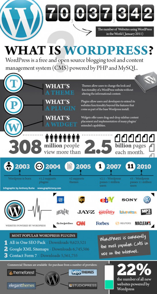 Infografia web wordpress